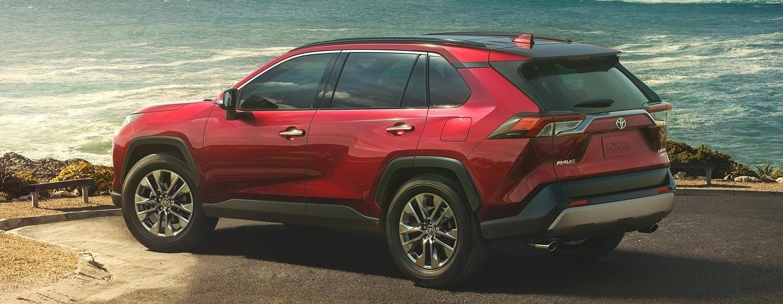 2019 Toyota RAV4 Exterior - Back End - Parked off road