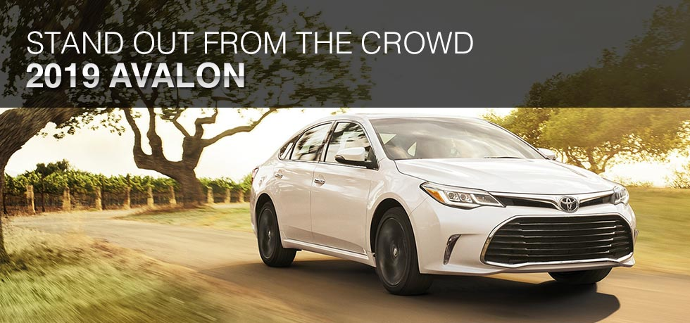 Exterior of the 2019 Toyota Avalon at Lipton Toyota near Pompano Beach, FL