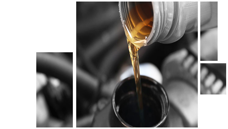 BMW Oil Change Service at your preferred BMW Dealership in Hilton Head, SC