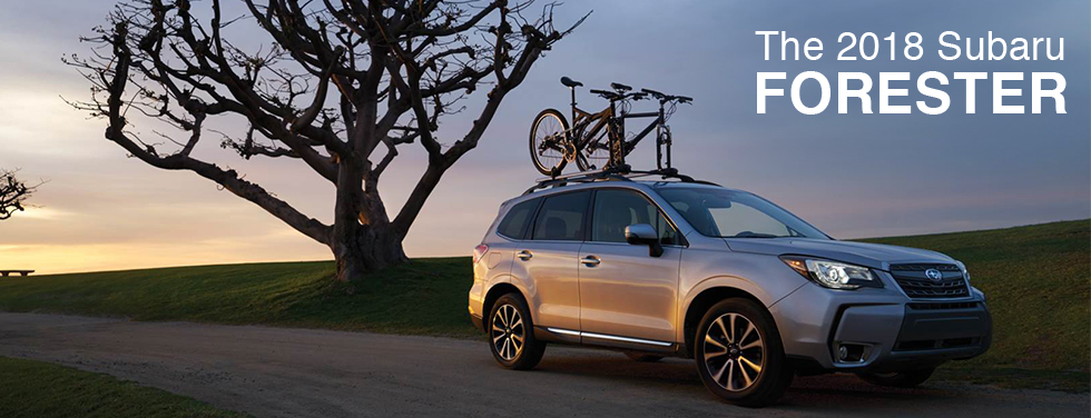 Discover The 2018 Subaru Forester At Your Alexandria Va Subaru