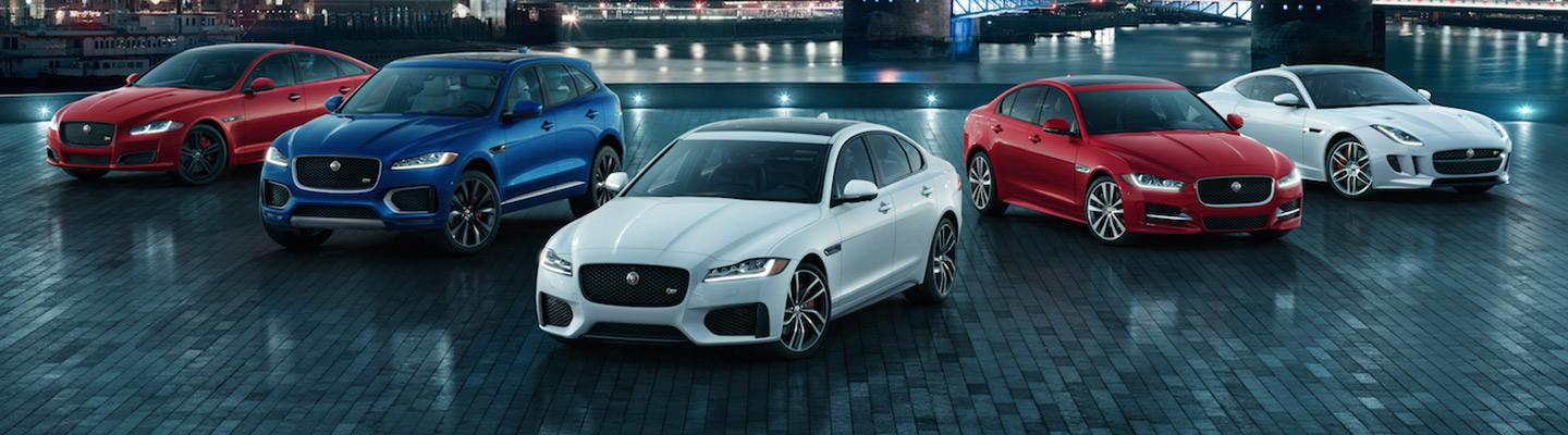 New and used Jaguar vehicles for sale parked together at Jaguar Ocala
