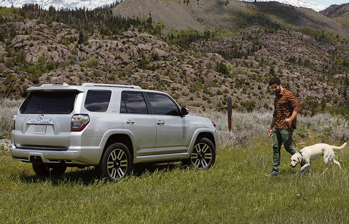Picture of the 2020 Toyota 4Runner