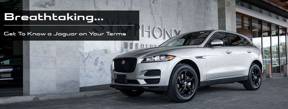 Breathtaking… Get To Know a Jaguar on Your Terms