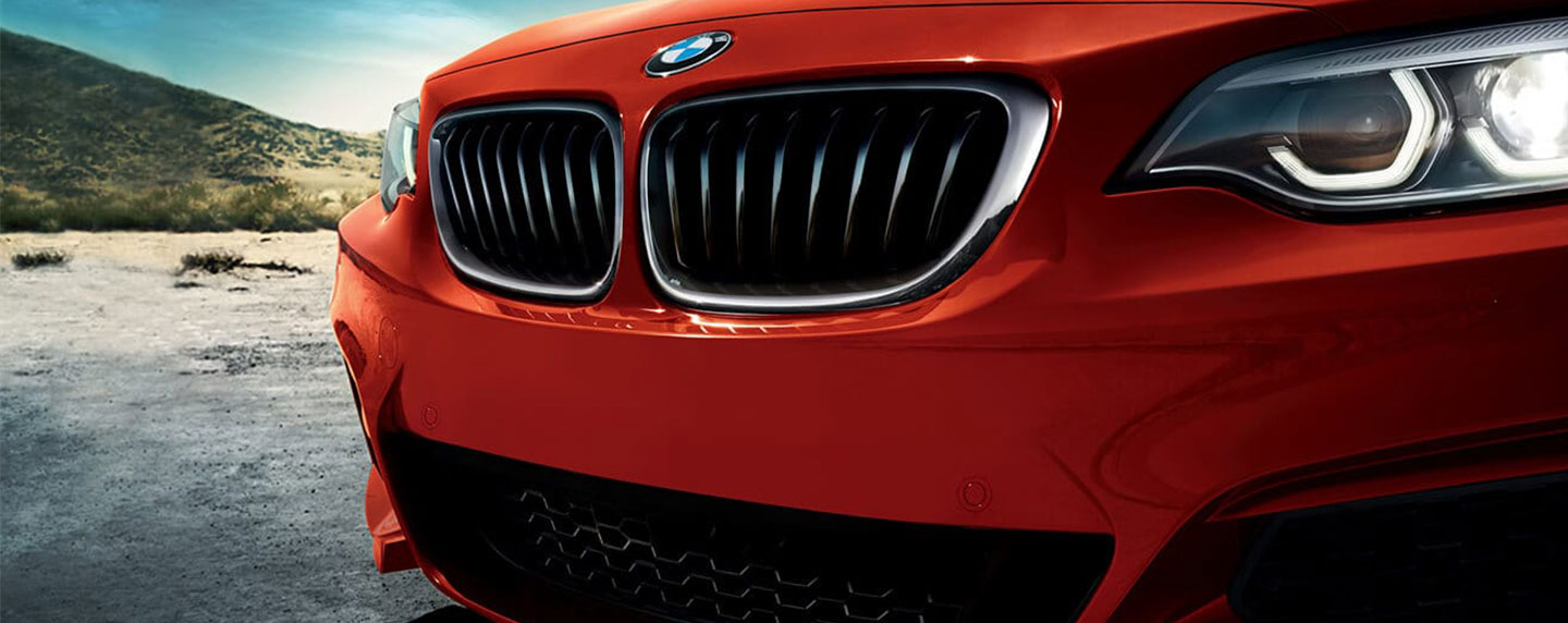 Front grille of the BMW 2 series