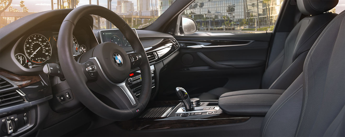 Front driver seat and steering wheel of the BMW X5