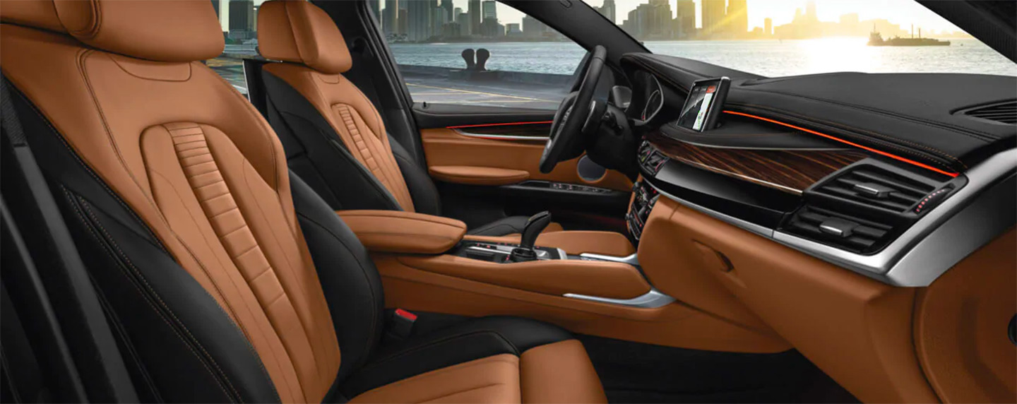 interior front seats in the BMW X6