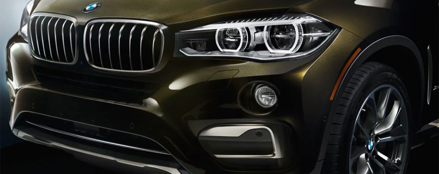 Grille and headlights of the BMW X6