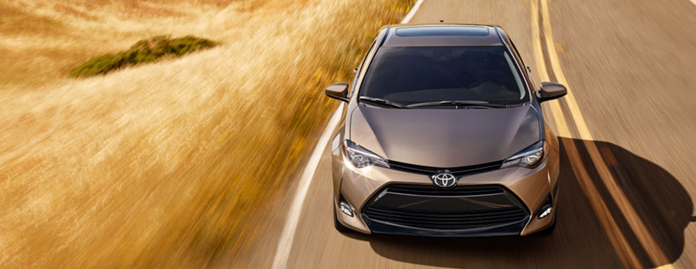 Exterior of the 2019 Toyota Corolla available at Toyota of Rock Hill near Charlotte, NC