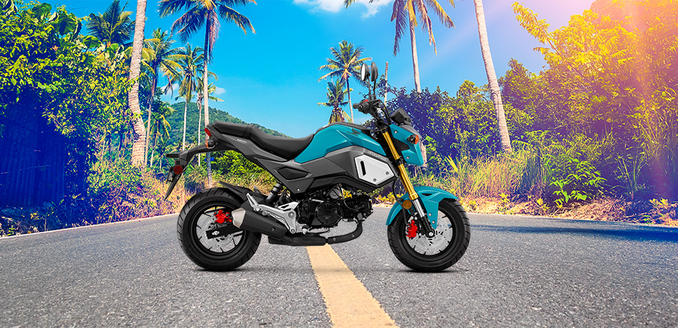 2019 Honda Grom Honolulu Hi | Cycle City Hawaii