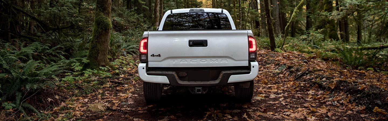 2019 Toyota Tacoma rear view