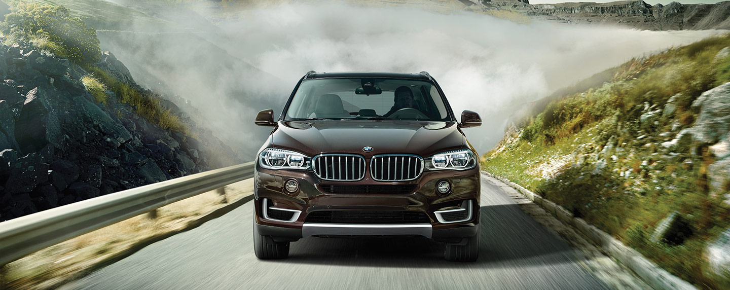 Front grille of the 2018 BMW X5 in motion