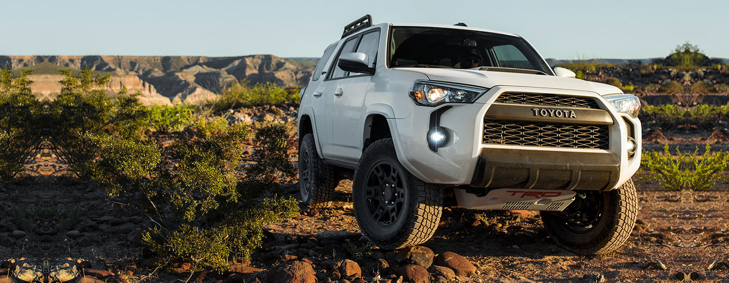 The 2019 Toyota 4Runner parked in a field.