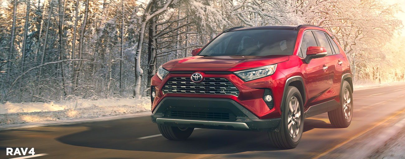2019 Toyota RAV4 in motion