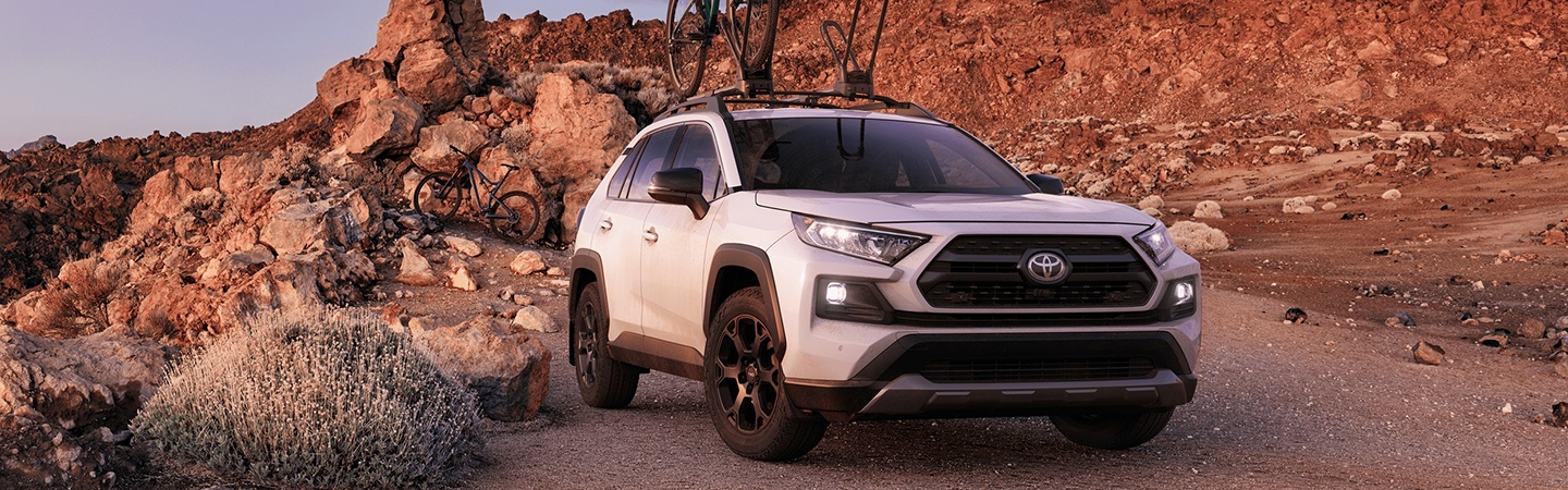 2020 Toyota RAV4 parked on a mountain