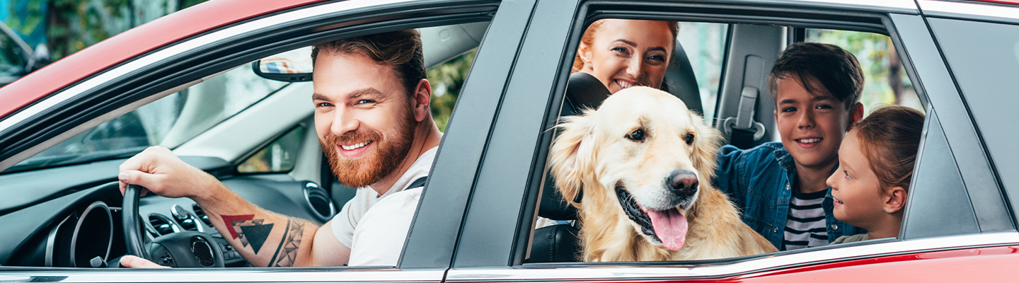 Family in car with dog head out window